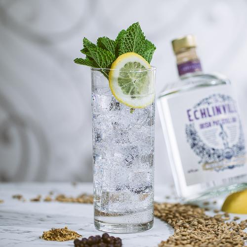 Perfect Echlinville Gin