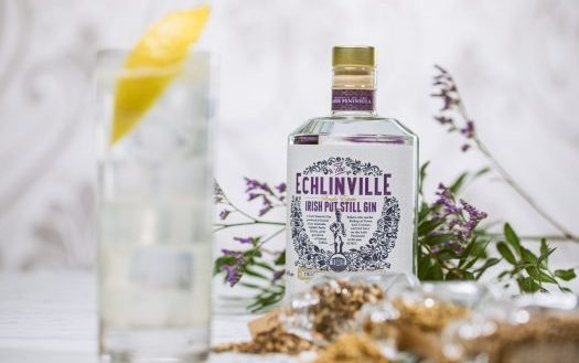Echlinville Gin bottle with barley and botanicals
